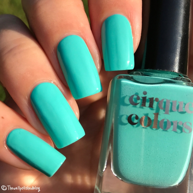 thewellpolishedblog | Nail polish, nail art, reviews, photos and chat!