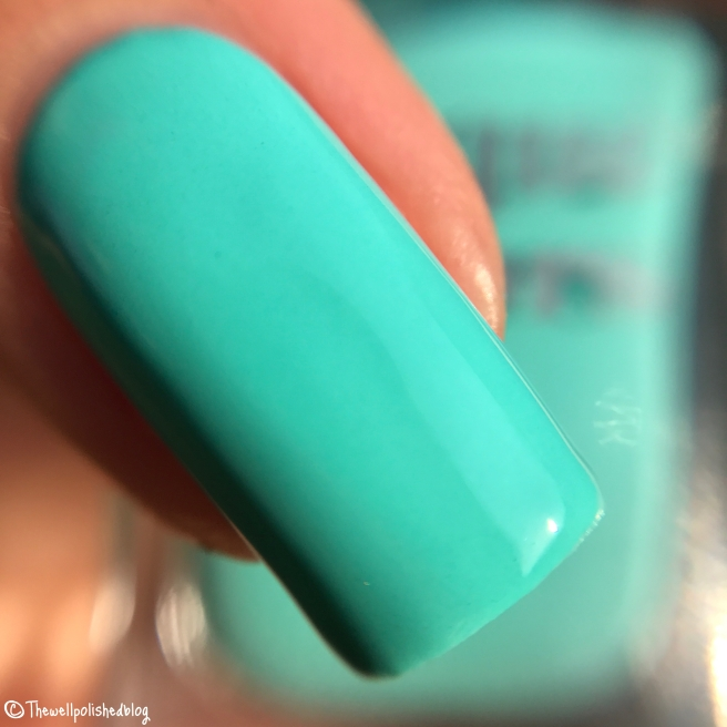 Nail Polish | thewellpolishedblog